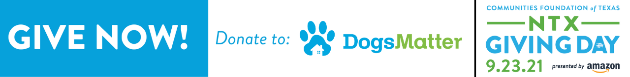 Make Donation to Dogs Matter